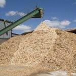 biomass fuel in Derbyshire