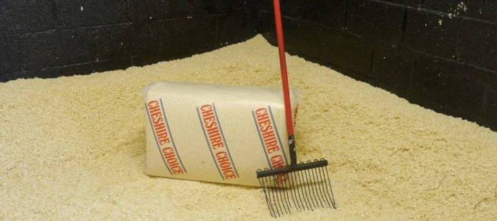 Charge to Victory with Horse Shavings from P.H Winterton and Son
