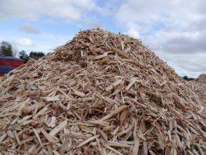 Biomass Fuel Gaining Government Support