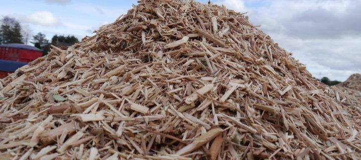 Demand for Biomass Fuel Continues to Grow
