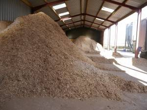 eco friendly shavings and sawdust