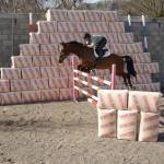 Equine Bedding