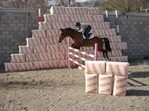 Horse bedding in Staffordshire : Equine bedding from P.H. Winterton