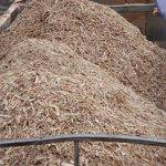 Sawmill waste collection