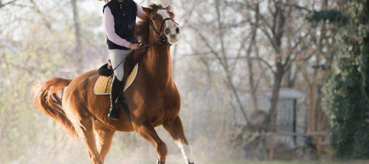 How to Perfect your Riding Position