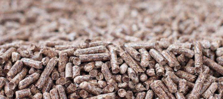 How Biomass Fuel Helps to Reach Climate Targets