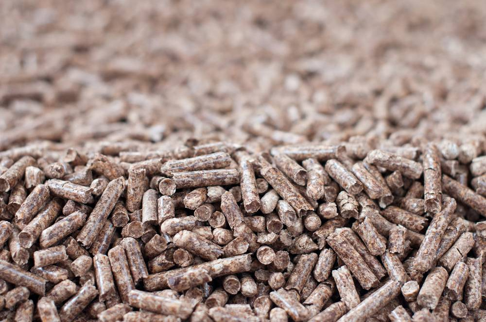 Explaining the History of Biomass Fuel
