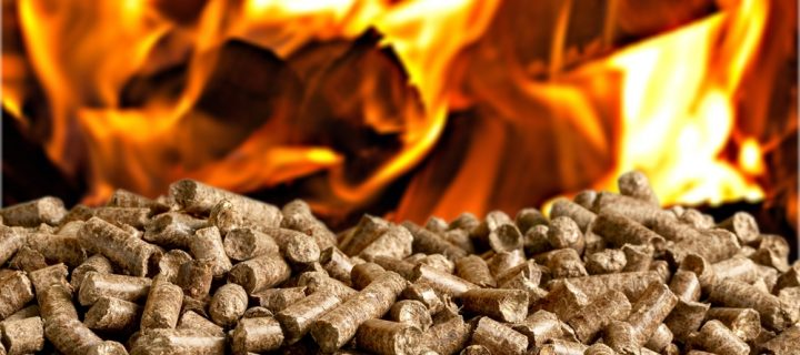 Everything You Need to Know About Biomass Boilers