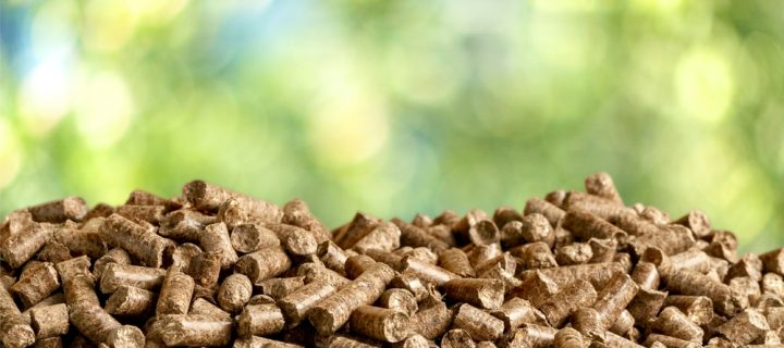 How the New Government Bill Affects Biomass Fuel