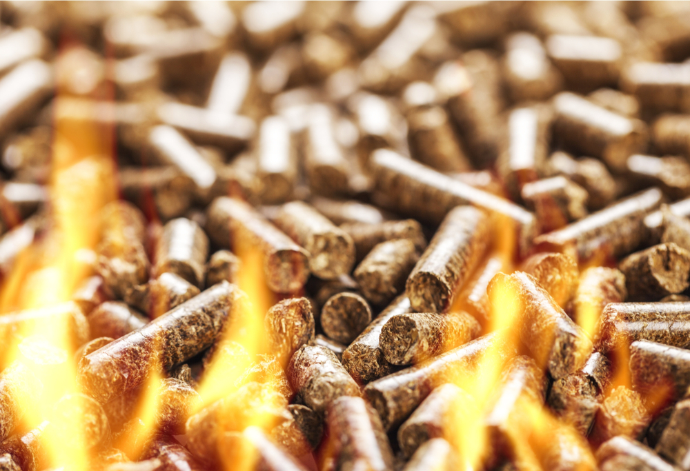 Biomass Fuel Continues to Rise in Popularity