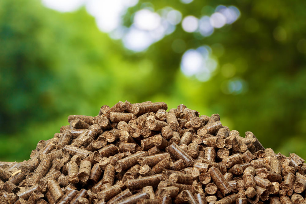 Why Should I Use Biomass Energy?
