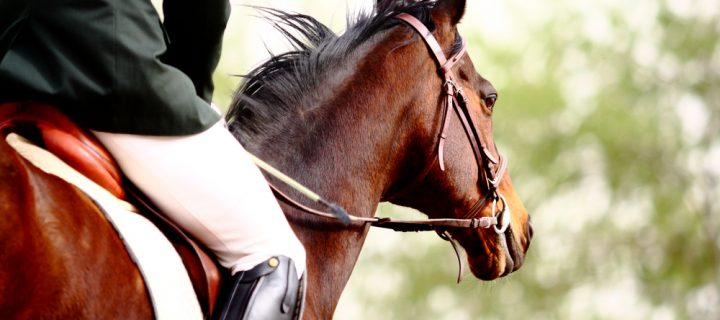 How Tier 3 Restrictions Affect Horse Riders