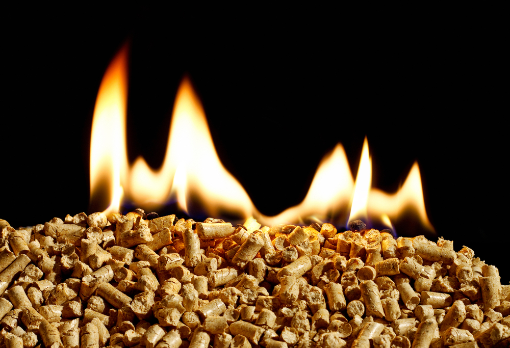 Why Biomass Fuel Boilers are Essential