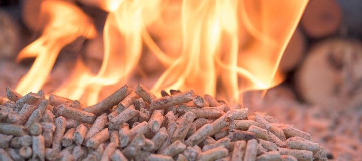 What are the main components of Biomass Fuel Boilers?