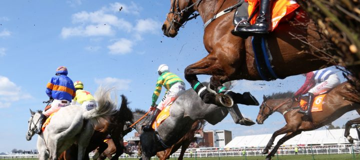 Why Quality Equine Bedding Could Ensure Grand National Success